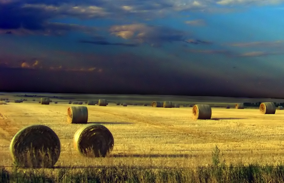 the history of manitoba one of canadas three prairie provinces Manitoba is more than one of canada's three prairie provinces encompassing 649,950 square kilometres, its territory ranges from canadian shield to grassland.